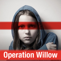 Operation Willow