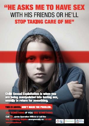 Operation Willow Young Person Poster
